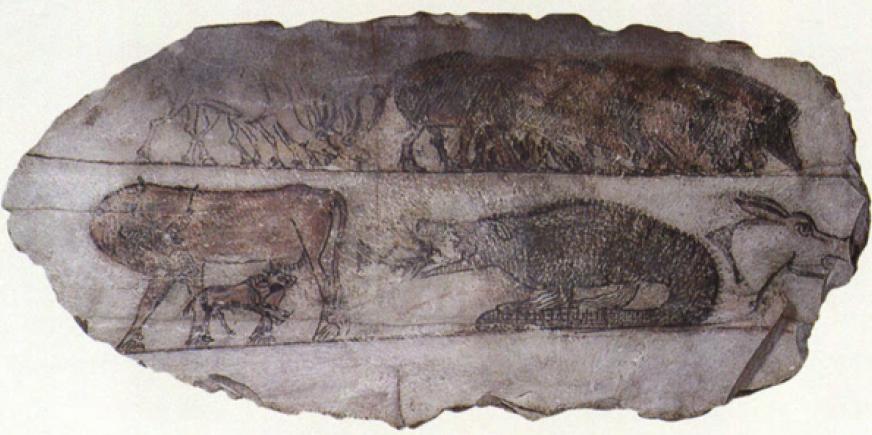 Зарисовка животных